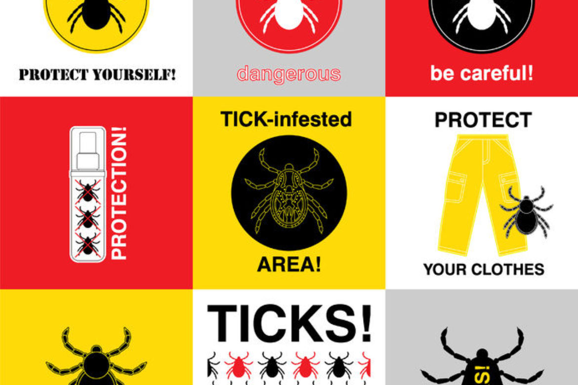 Ticks, People and Allergies